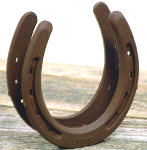 Horseshoe  Napkin Holder