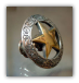 Antique Gold Star w/Etching- Gold Knob-  (Lockable)